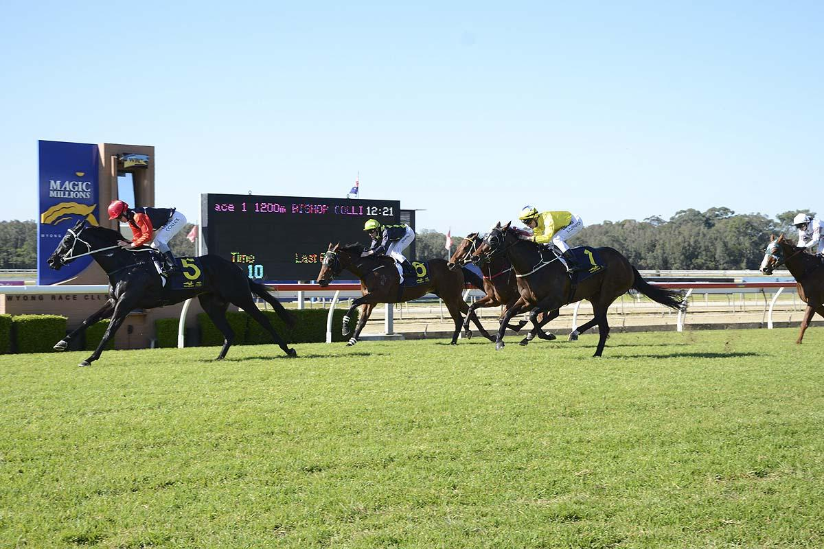 Supreme Joy surging clear to win by one-and-a-half lengths.