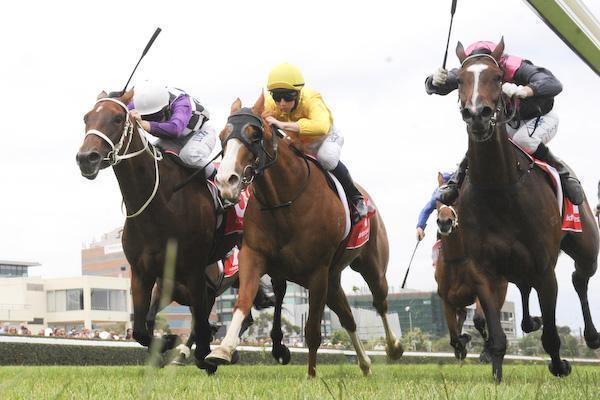 Anaphora - Caulfield win